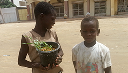 Street children (Talibés)